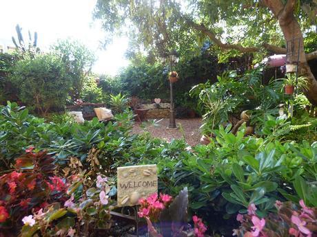 Renovando unas viejas jardineras