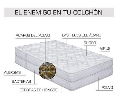 EL ÁCARO, EL GRAN ENEMIGO DE TU COLCHÓN