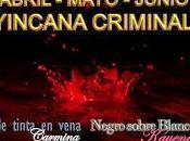 Balance junio yincana criminal