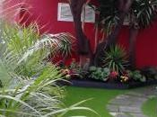 ¡Instale césped artificial terraza!