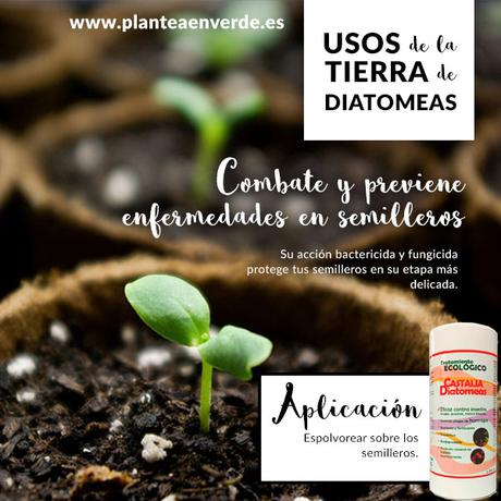 La tierra de diatomeas todos sus usos y aplicaciones - Tierra para semilleros ...