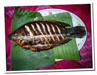 fish of from mekong river