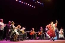flamenco Patrimonio Humanidad!