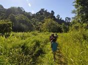 Brunei: búsqueda cascada secreta