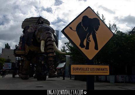 elefante nantes