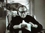 gatos, poema Charles Bukowski