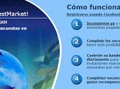 Ganar dinero haciendo encuestas GlobalTestMarket