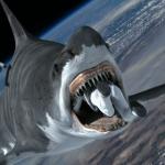 Sharknado-Espacio-Frikarte-2