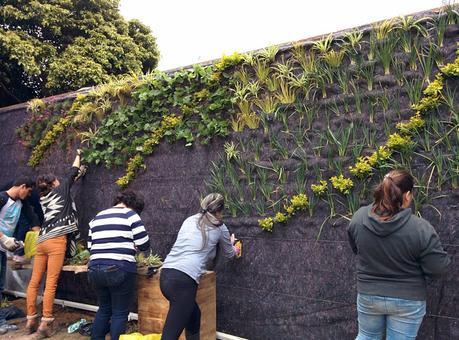 Jard n vertical en el bot nico de bogot colombia paperblog for Jardin botanico cursos