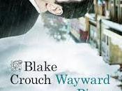 Reseña #34: Wayward Pines. paraíso
