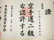Karate reflexiones tras años entrenando Tokio.
