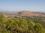 Éfeso: recuerdo polis