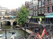 cosas podríamos aprender holandeses