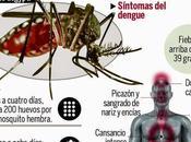 """Virus vienen """"revienen"""": Chikungunya polio"""