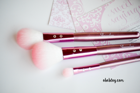 SLMISSGLAM_BEAUTY_Pink_Brushes_02
