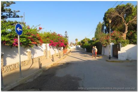Zahara Running – Ruta por el Parque Natural de la Breña, entre Barbate y el Faro de Trafalgar