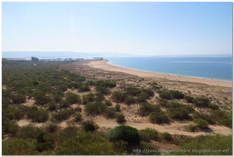 regreso a la playa de Hierbabuena