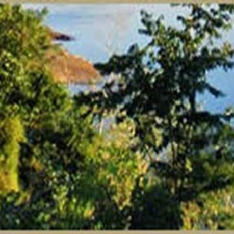 El Parque Provincial Puerto Esperanza preserva la última franja de monte nativo de la región.