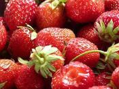 oídio fresas