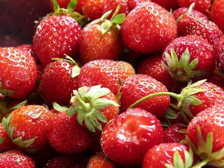 El oídio en las fresas