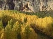 Alcalá Júcar entre bosques para sentir Otoño