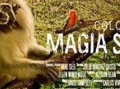Colombia: Magia Salvaje: película para ver,