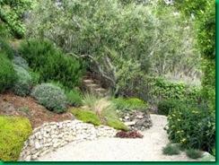 El jard n mediterr neo paperblog - El jardin mediterraneo ...
