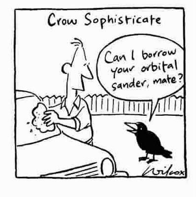 Cría cuervos y se volverán genios