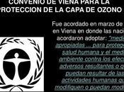 Manual convenio Viena para proteccion capa ozono