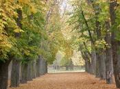 Relato otoño: quedan días verano