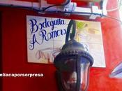 Restaurante bodeguita antonio romero sevilla