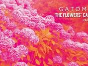 Gatomidi publica Flower's Cavern Part