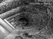 BARCELONA: PARK GÜELL. FOTOGRAFÍAS BLANCO NEGRO