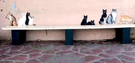Cats Miami