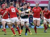 Sudáfrica superó Gales medirá Nueva Zelanda semifinales.