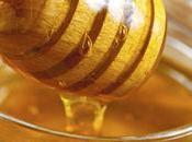 Todo debes saber sobre miel need know about honey.