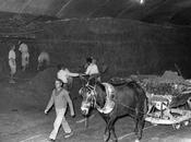 Fotos Antiguas: Construyendo Metro Madrid (1962)