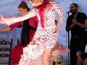 Noches flamenco Granada