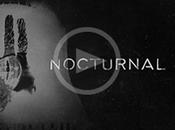 """""""nocturnal"""", nueva canción amaral"""