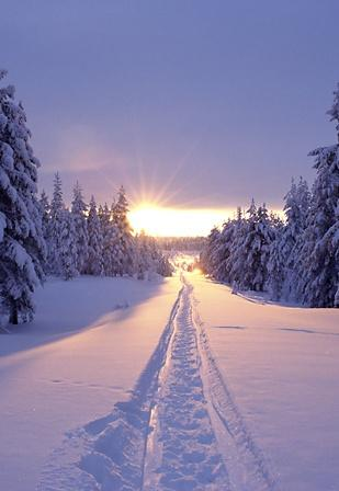 Tracks in the snow at sunset in Solberget, Lapland, northern Sweden • photo: J. Oetinger on Flickr:
