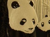 Compre ultimas Pandas Onza!