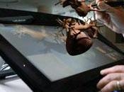 Simulador permite mejorar estudios cardiologicos.