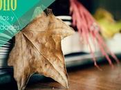 Recursos: Cuentos sobre otoño propuesta actividades para Educación Infantil