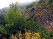 cañón Jarama otoño