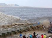 Asombroso video visitantes arrastrados fuerte marejada Qiantang
