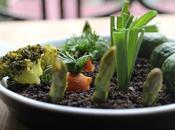 Huerto comestible tierra olivas salsa gribiche, Heston Blumenthal... para Cooking chef