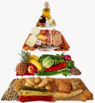 Las 11 mayores mentiras del Sistema de Nutrición Oficial