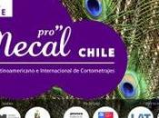 Este martes Noviembre comienza Festival Mecal Chile