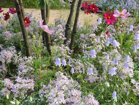 Jardines para los sentidos. Entrevista con Richard Miers