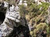 Primeros pobladores recolectores Perú